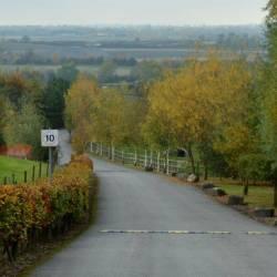 Scenic driveway